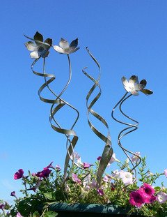 Trio of Flowers with Spiral Stems