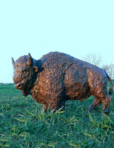 Bison Maquette (Wax)