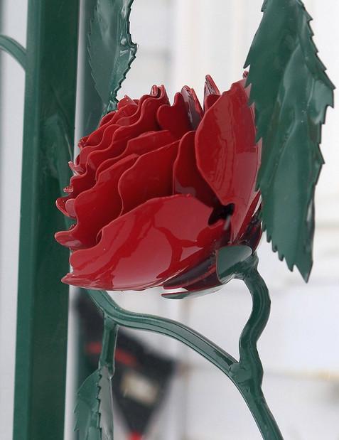 Rose Railing Flower (closeup)