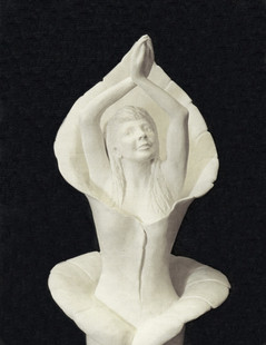 Venus in Bloom (Closeup)
