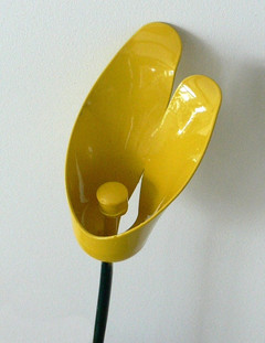 Yellow Calla Lily (closeup)