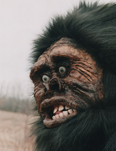 Sasquatch (closeup face)