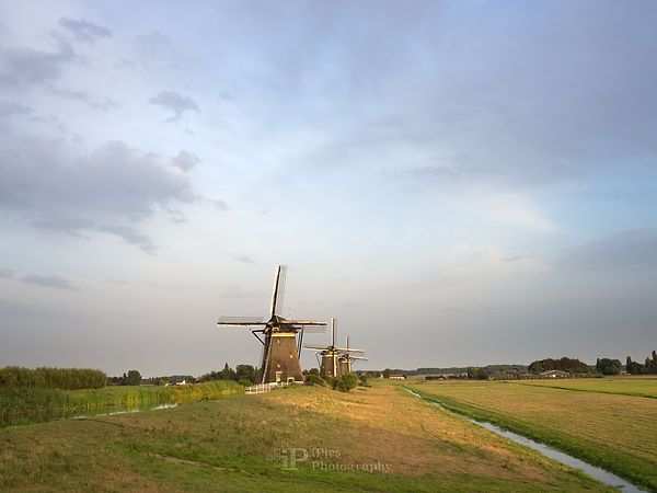 windmills-summer-evening-ip.jpg