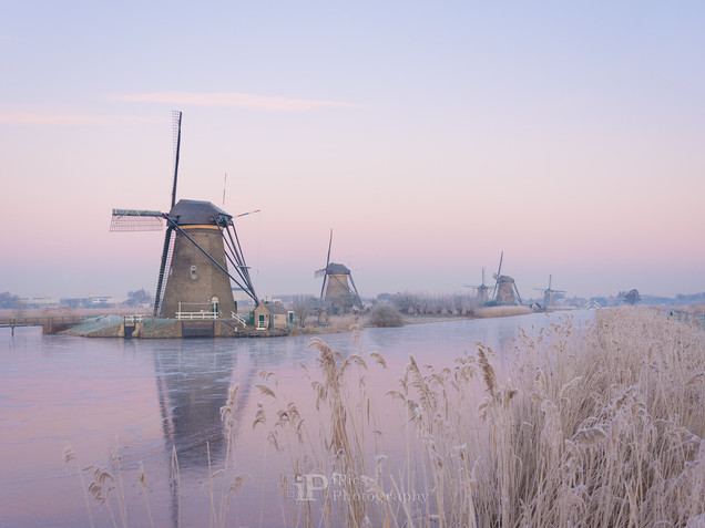 Pastel sky over windmills during a cold sunrise