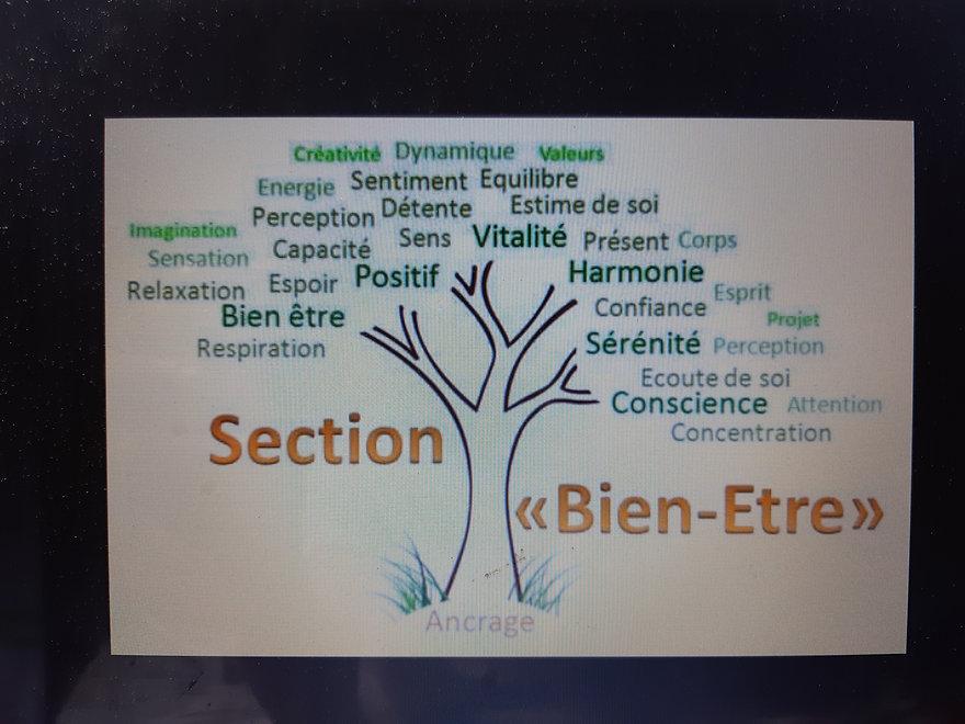 Section_bien-être.jpg