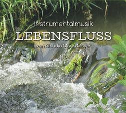 cd_lebensfluss_vs_jpeg.jpg