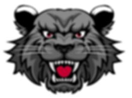 Upstate Bearcats.PNG