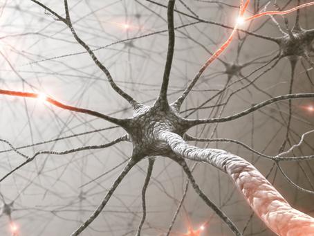 Žarnyno ir smegenų ryšys