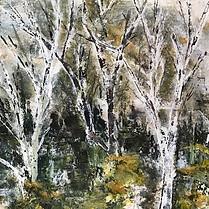 Birch & Gorse