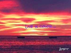 live in color.jpg