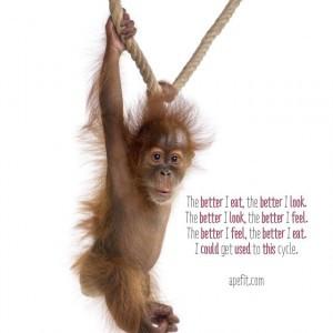 orangutan rope.jpg