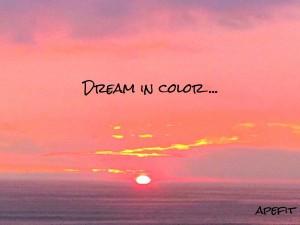 dream in color.jpg