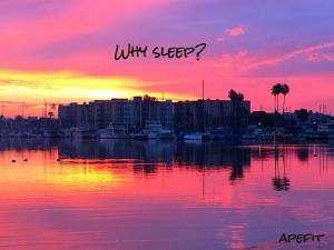why sleep.jpg