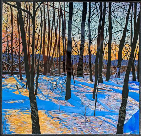 Winter Sunset in Michigan (2019)