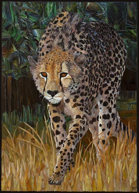 """""""Stalking Cheetah"""""""