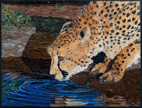 Thirsty Cheetah (2021)