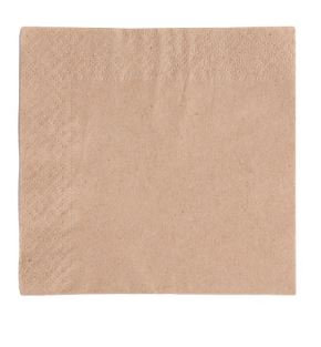 Compostable Napkin - Unbleached 2ply