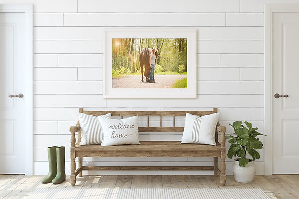 Farmhouse foyer with beautiful white framed equine and his owner in the sunshine