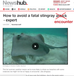 Stingrays in the Media... how wording matters!