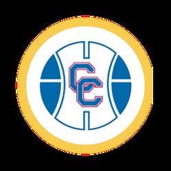 Circle Icon 27 new - 1.png