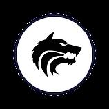 Circle Icon  9 - 9  .png