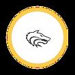 Circle Icon  19 .png