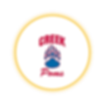 Circle Icon  21 .png