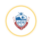 Circle Icon  14 - 14 .png
