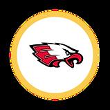Circle Icon  10 .png