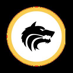 Circle Icon  9  .png