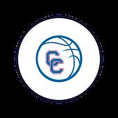 Circle Icon  24  .png