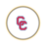 Circle Icon  7   -  7 .png