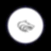 Circle Icon  19 - 19 .png