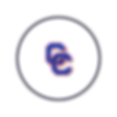 Circle Icon  13 .png