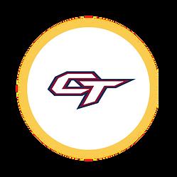 Circle Icon  12 .png