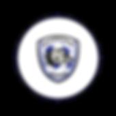 Circle Icon  20 .png