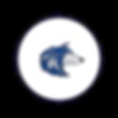 Circle Icon  6  -    .png