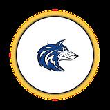 Circle Icon  6  -   6 .png