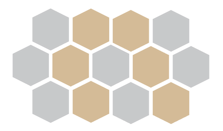 Honeycomb pic - new - Final - 1 .png