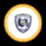 Circle Icon  20 - 20 .png