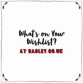 Radley Christmas Campaign