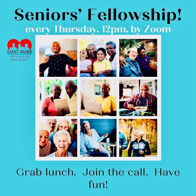 Seniors' Fellowship pic.jpg