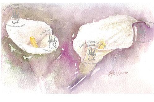 Fiori - Flowers ad acquarello
