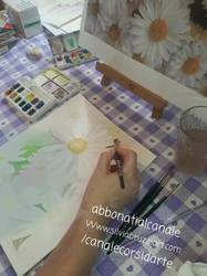 margherite colori forti _1_1.mp4