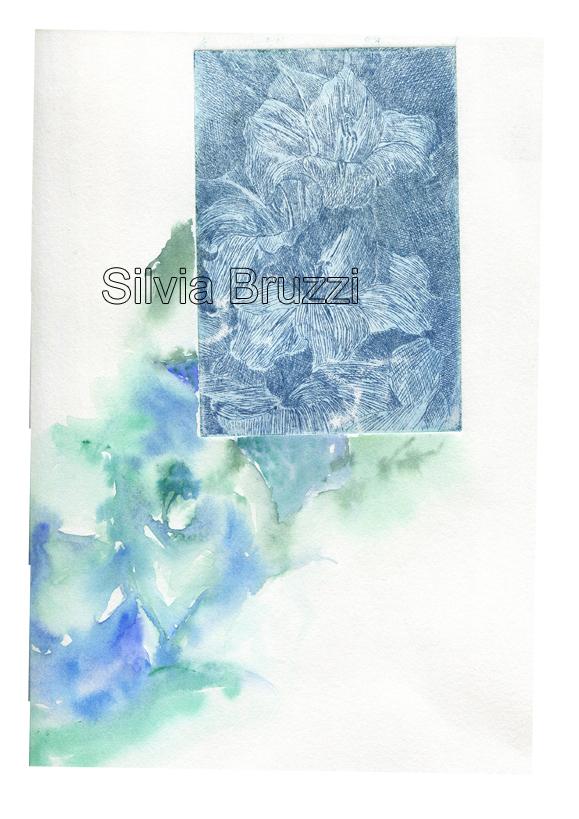 metamorfosi blu