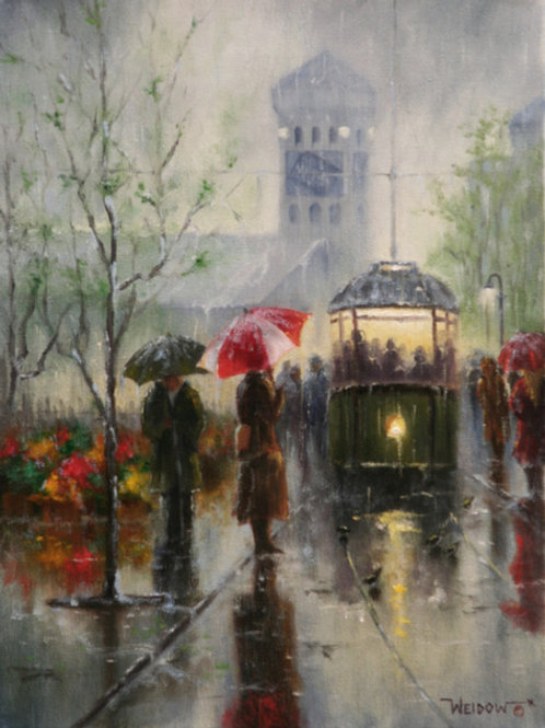 """""""Spring Showers- Great Falls"""""""