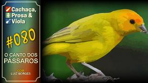 CPV080 - O Canto dos Pássaros
