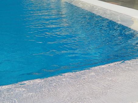 Beckenrandschwimmer
