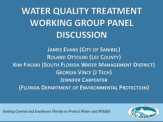 Water quality treatment working group panel discussion first slide of presentation