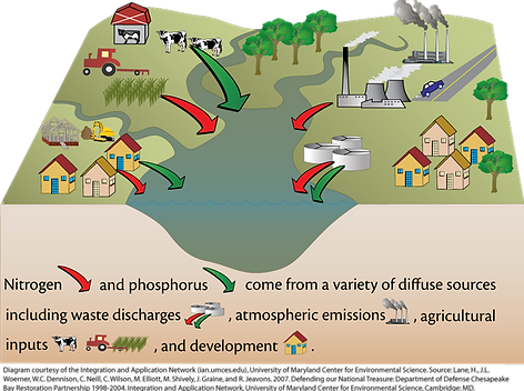 Nutrient Pollution Sources diagram. Nitrogen and phosphorus come from a variety of diffuse sources including waste discharges, atmospheric emissions, agricultural inputs, and development.